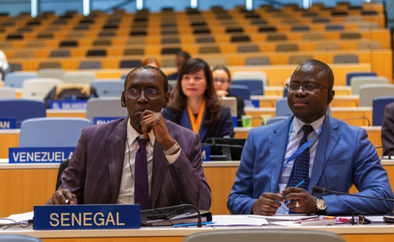 Senegal delegates in the WIPO assembly hall. Photo: Emmanuel Berrod. This work is licensed under a Creative Commons Attribution-NonCommercial-NoDerivs 3.0 IGO License.